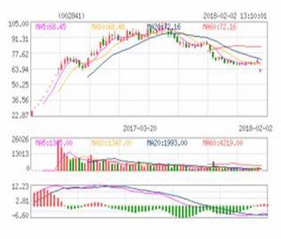 上海市股票什么开头,沪字开头的股票