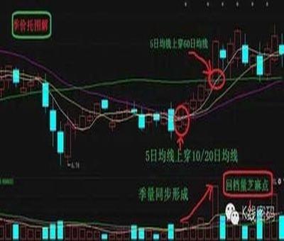 上海股票期权代理,股票期权代理返佣多少