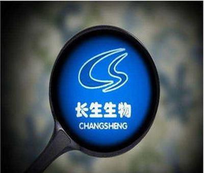 上海机场股票行情今天,股票上海机场