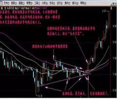 证券从业人员自己能炒股吗?