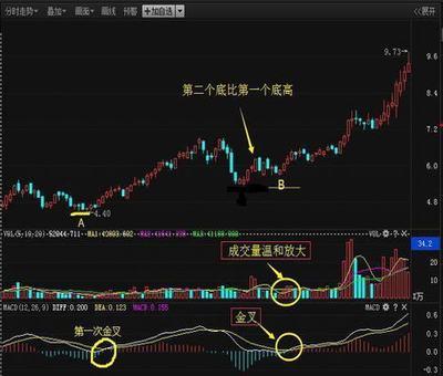 正邦集团股票行情,正邦科技股票明天会涨吗