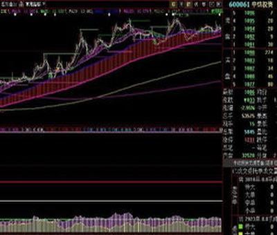 上海股票期权风险,个股期权基本风险