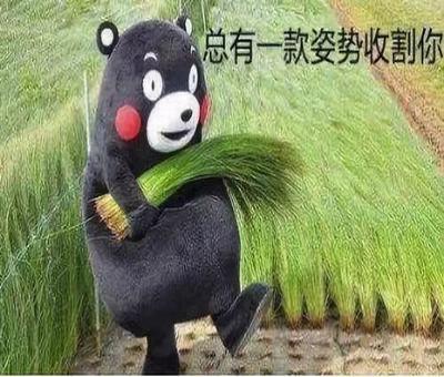 上海股票期权不存在,什么是股票期权交易