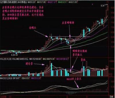 一点资汎股票池分析,请教各位大侠股票池收益分析统计问题