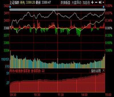一个公司股票分配,一个公司的股票分多少种